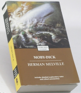 blind-side-moby-dick-book