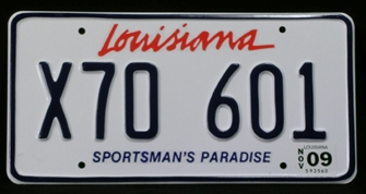 THE BLIND SIDE: LOUISIANA LICENSE PLATES